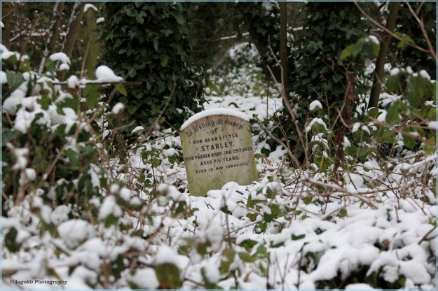 Little grave