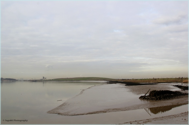 Thames from Purfleet