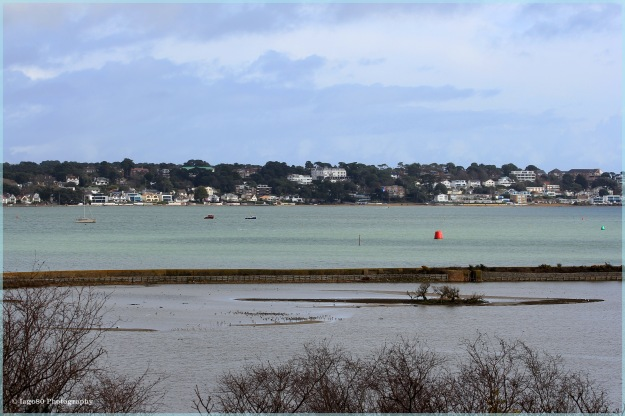 View over lagoon and Poole Harbour