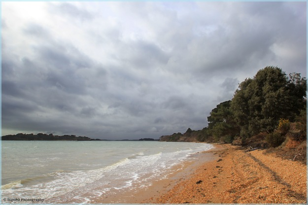 Brownsea beach