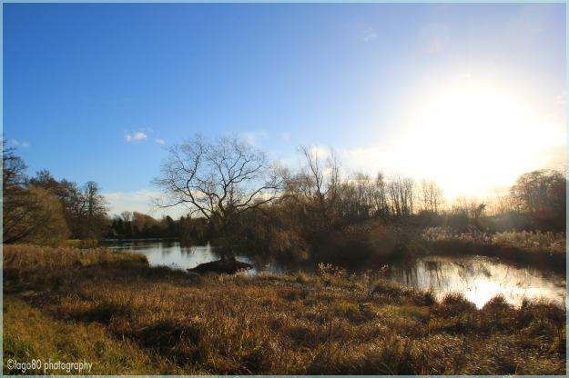 Newstead lake