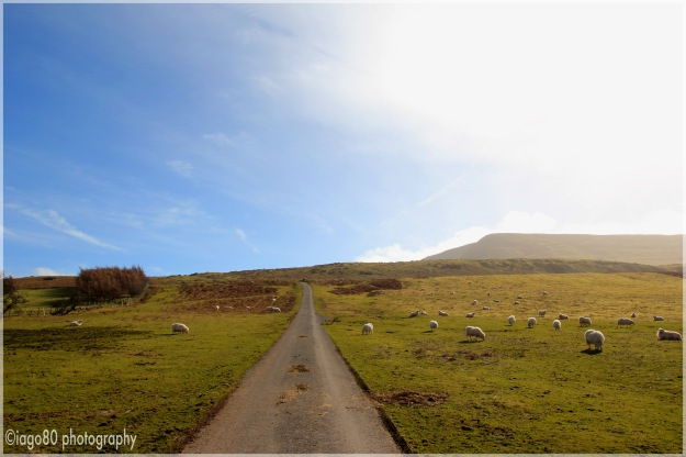 Hay Bluff in the distance under the sun