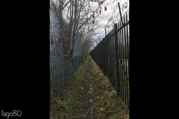 Roding railway walk v2